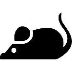 1570725746_mouse.png